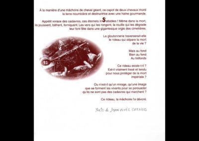 Pierre et Anne-Marie Guerchet Jeannin 4